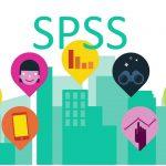 spss analizi yaptırma