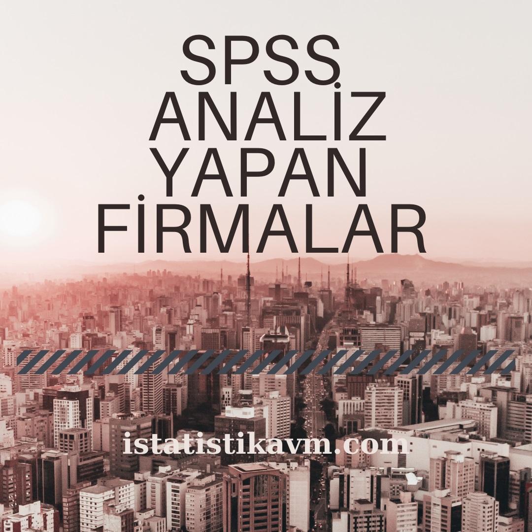 spss analiz yapan firmalar