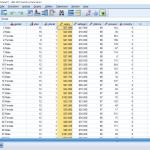 spss analiz 1018