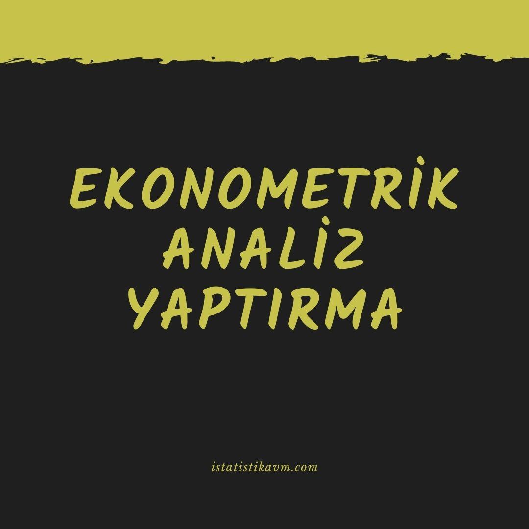 ekonometrik analiz yaptırma