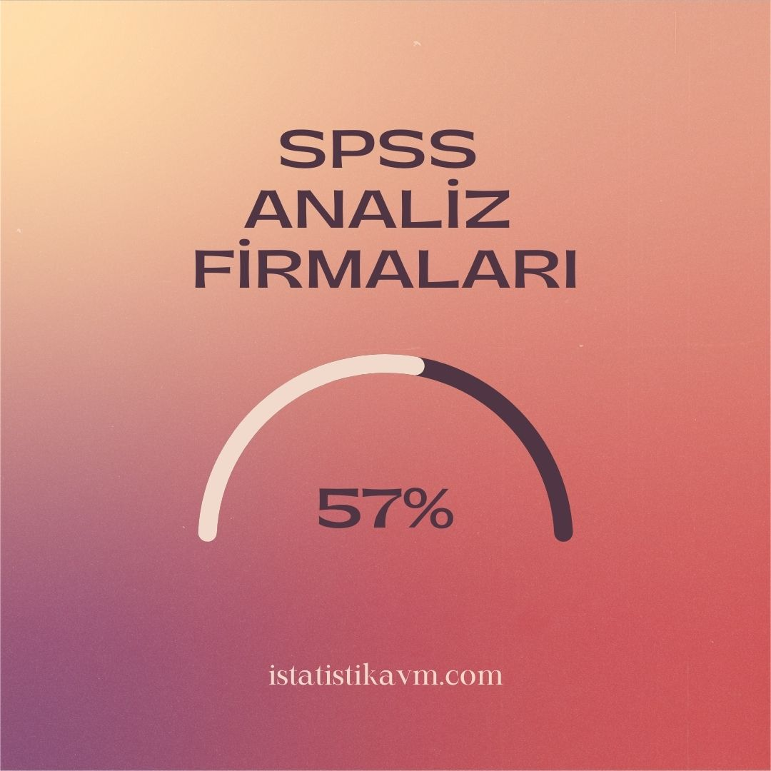 spss analiz firmaları
