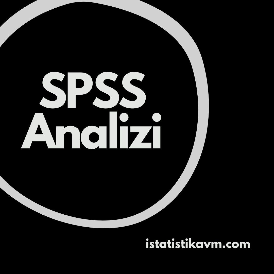spss analizi