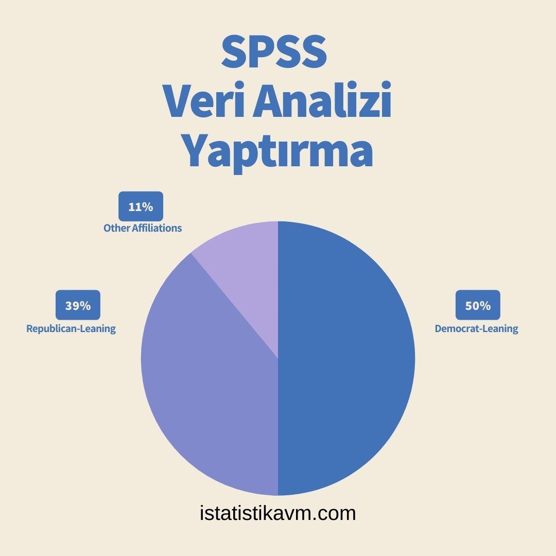 spss veri analizi yaptırma