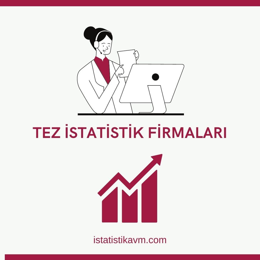 tez istatistik firmaları