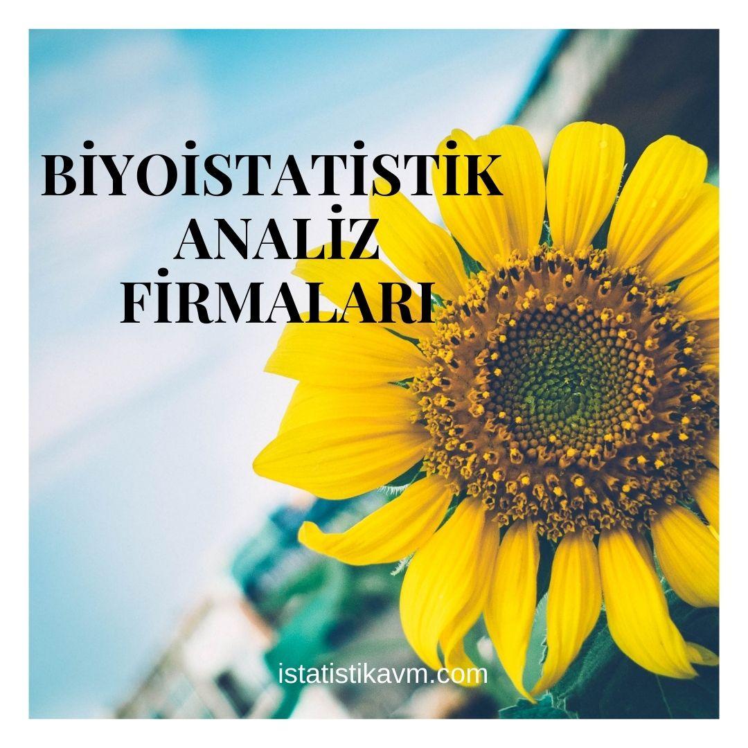 biyoistatistik analiz firmaları