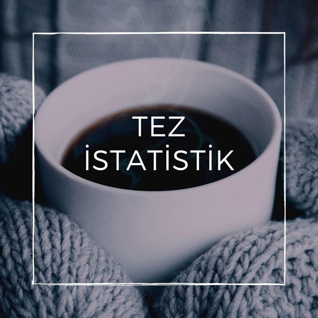 tez istatistik
